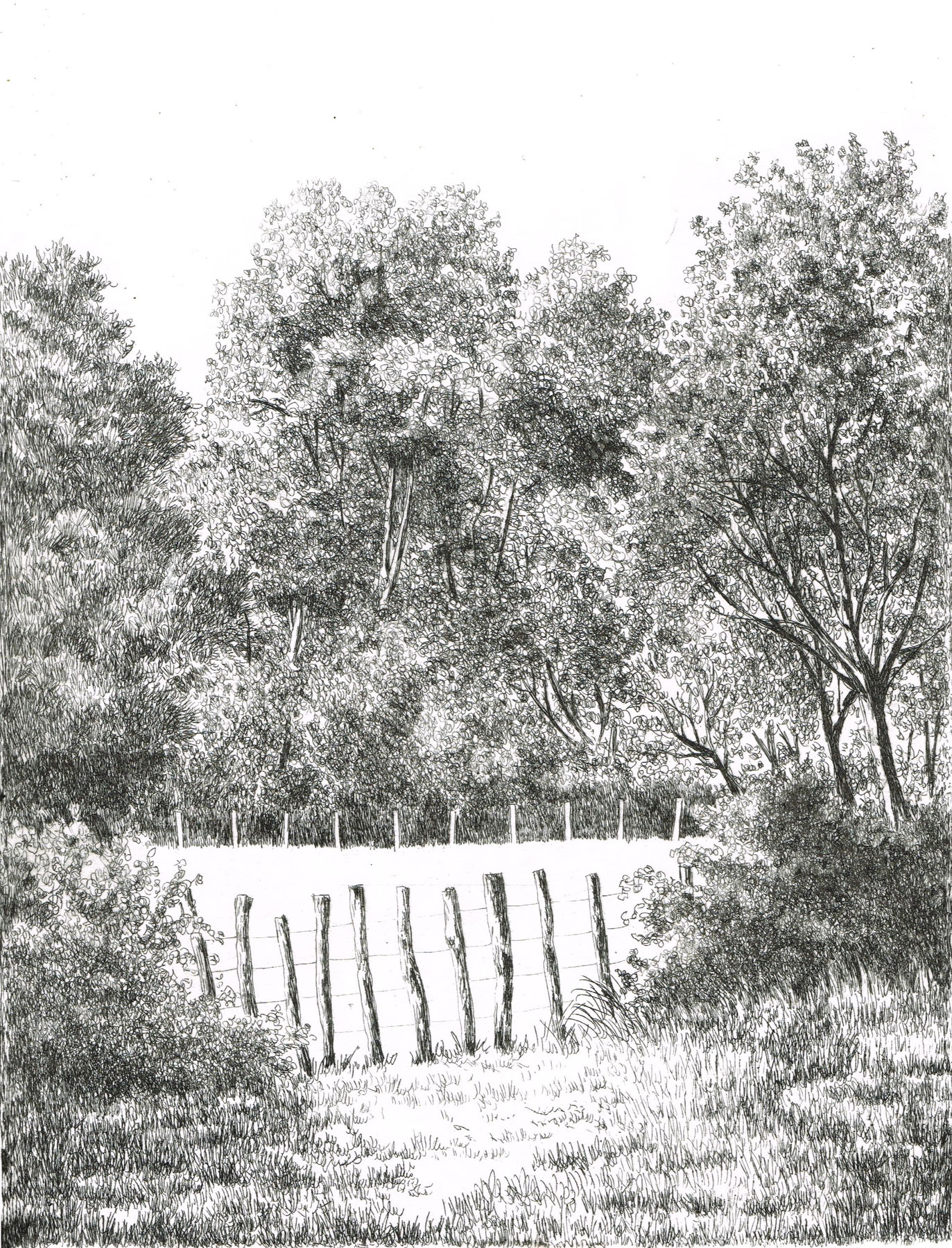 Marais des Huttes